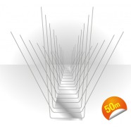 birdspikes-50m.jpg