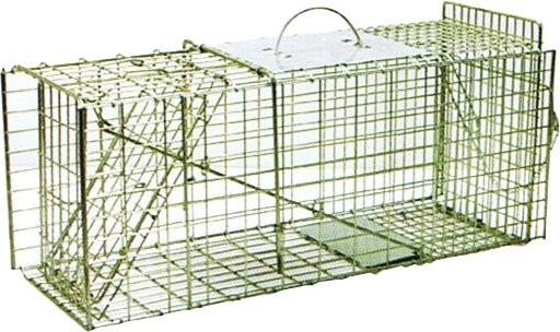 humane possum cage