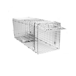Feral Cat Trap