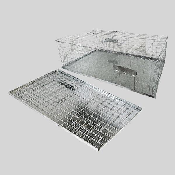 Pigeon trap foldable humane open