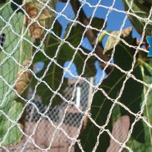 White Diamond Bird Netting
